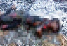 Mulher é executada em Mogi-Guaçu