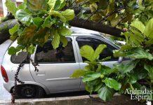 Chuva com fortes ventos e granizo causa estragos em Andradas